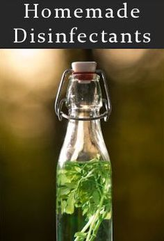 Easy Homesteading: Bleach-Free Surface Disinfectants