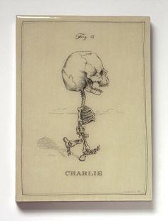 Charlie brown skeleton