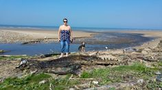 A couple of dog walkers have stumbled across the remains of a mysterious sea creature on a beach in Wales.  Melanie Edwards Rees and Mike Rees made the strange finding on Morfa Beach in Port Talbot.  See also: Mysterious sea monster washes up in