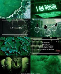 "hale-of-stiles-heart: "" Hogwarts House Aesthetics - Slytherin Or perhaps in Slytherin, You'll make your real friends, Those cunning folk use any means, To achieve their ends. """