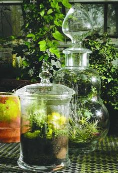 Crushes: Apothecary Jars