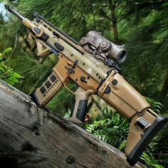 SCAR 16 with Elcan Specter 1-4x, WML, SCAR grip, and Magpod.