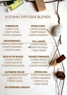 I love the smells of fall…the leaves, the crisp air, the baking, the seasonal foods, etc. With all those delicious scents in mind I put together a graphic with some essential oil blendsfor your diffuser. Fill the air with the smells of snickerdoodle cookies, pumpkin pie, fall leaves, orange pomanders, spiced cider, and more. Most …