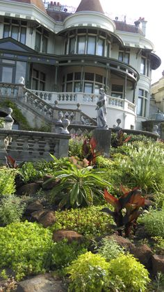 Our beautiful gardens Historic Homes, Beautiful Gardens, Museum, Mansions, House Styles, Gallery, Plants, Inspiration, Home Decor