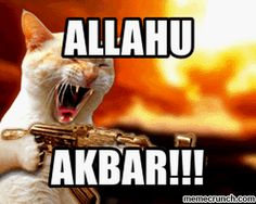 Exposing Islam: SOME OF THE PROBLEMS, ALLAH DEALING WITH, ALLAH O AKBAR