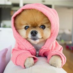 Soulmate24.com By special request @jiffpom Mens Style