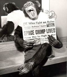 Monkey successfully returned from space flight. United States, 1961
