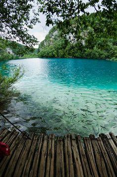 Turquoise !!!!    Laghi di Plitvice Croazia