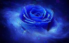 ★ Brilliant Blue ★ BOA NOITE AMIZADES<><><><><><><><><><><><><><><><><> <><><><><><><><><><><>CLAUDIO ESPINDOLA<><>25-03-2015.