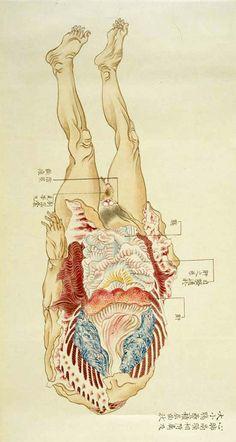 Decaying Corpse study by Yoshimura Lanzhou, Edo era. Found...