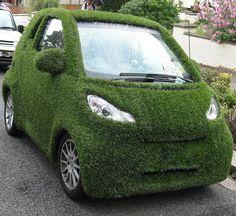 Grass car to truly your fandom