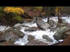 Hikes & Trails near Asheville
