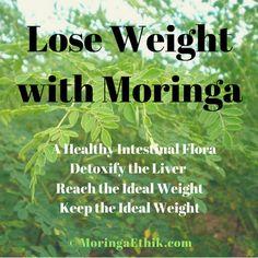 Moringa Ethik is under construction Alternative Health, Alternative Medicine, Natural Herbs, Natural Healing, Natural Medicine, Herbal Medicine, Health Diet, Health And Nutrition, Weight Loss Tea