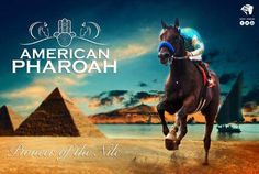 AMERICAN PHAROAH, 2015 Kentucky Derby and Preakness winner, may go for the Triple Crown at Belmont.