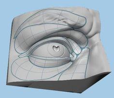 Exceptional Drawing The Human Figure Ideas. Staggering Drawing The Human Figure Ideas. Facial Anatomy, Head Anatomy, Anatomy Drawing, Anatomy Art, Drawing Skills, Drawing Techniques, Figure Drawing, Anatomy Sculpture, Sculpture Art