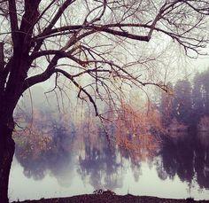 winter mantle Lake Daylesford Daylesford, Wombat, Mantle, Victorian, Abstract, Winter, Artwork, Beautiful, Painting Art