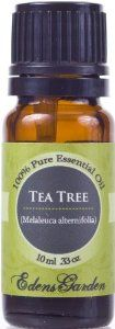 Tea Tree (Melaleuca) 100% Pure Therapeutic Grade Essential Oil- 10 ml