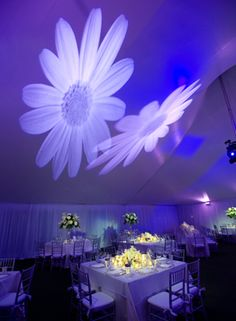 Beautiful lighting by Tony Ormonde, Grace's brother.  by John Unrue