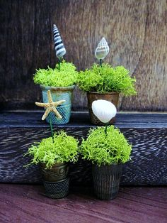 Simple Beach House Planters