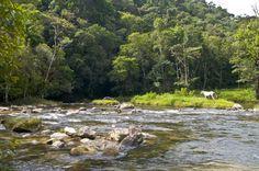 Macaé river