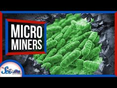 Future Science and Technology Humans have been using microbes to separate minerals from mud since the middle of the last[...]
