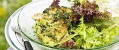 Kräuter-Egli auf Salat