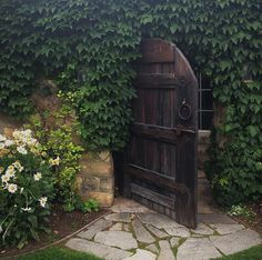 I love this secret garden, wood door, walkway, and vine.