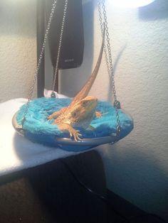 Iggy the bearded Dragon. . His hammock is American doll chair.