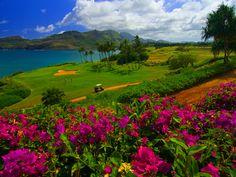 Kauai Golf, Hawaii