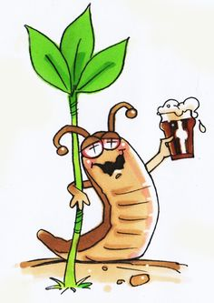 Looking for Organic slug and snail control? Here are our suggestions for the 10 Best Ways To Control Slugs and Snails Organically. Slug Trap, Slug Control, Insecticide, Veg Patch, Insect Repellent, Companion Planting, Small Gardens, Vulnerability