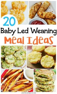We've got 20 family recipes for baby led weaning - perfect for finger foods too! Hidden veggie meatballs, baby friendly curry and more. Baby Weaning First Foods, Baby Led Weaning 7 Months, Weaning Foods, Baby First Foods, Baby Recipes 9 12, Family Recipes, Healthy Baby Food, Healthy Toddler Meals, Toddler Finger Foods