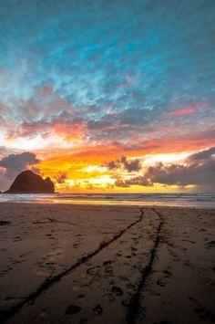 Piha Beach, West Auckland-10 Beautiful Beaches in New Zealand