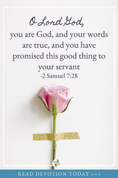 Devotional Quotes, Daily Devotional, Bible Quotes, Bible Verses, Daily Bible, Scriptures, Christian Messages, Christian Encouragement, Christian Quotes