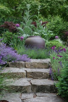 Focal point large pot, cardoons, allium, stone steps, lovely contrasts, textures, color