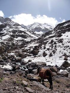 climbing Mount Toubkal, Morocco