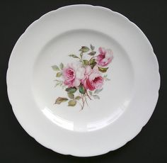 Hand painted 19th Century plate