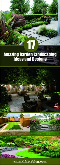 amazing landscapinbg garden #homedecor #gardening