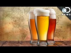 How Beer Made The Modern World - YouTube