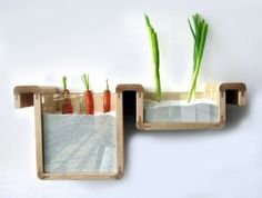 Save food from the fridge project- With the idea of preserving food longer naturally, Jihyun Ryou gathered traditional knowledge about food and designed modern storage units that keep produce fresh without refrigeration.