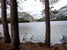 Cadre Idyllique pour Tenaya Lake. La suite sur www.voyage-aux-etats-unis.com/j5-san-francisco-yosemite-park/