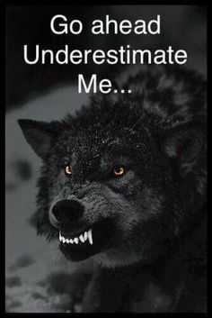 When need we all have the wolf who shows that he's fierce, it's primal. ♡Wolf Pack