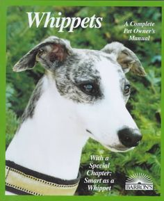 Whippets: Everything About Purchase, Adoption, Care, Nutrition, Behavior, and Training (Paperback) | Overstock.com Shopping - The Best Deals on Dogs Whippets