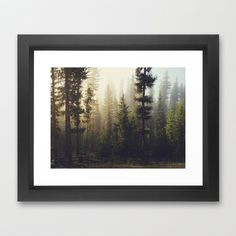"""""""Sunrise Forest"""" Framed Art Print by Kevin Russ on Society6."""