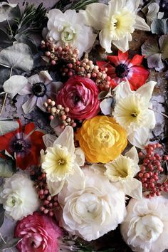 My Week of Flowers - Emily Quinton's (@emilyquinton) Story on STELLER #steller