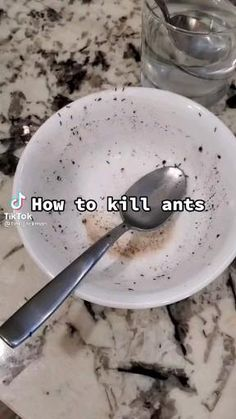 Feel Good Videos, Useful Life Hacks, Ants, Things To Do, Cool Stuff, Funny Stuff, Life Tips, Hashtags, Benefit