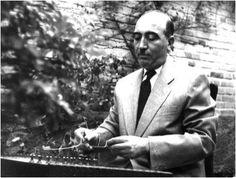صبا در نواختن همه سازهای موسیقی ردیف چیرگی پیدا کرد و تمام سازهای ایرانی همچون سنتور، تار، سهتار، تنبک، نی، کمانچه، ویولن و نیز پیانو را در حد استادی مینواخت ولی ویولن و سهتار را به عنوان سازهای تخصصی خود برگزید. سپس در مدرسه عالی موسیقی به شاگردی علینقی وزیری درآمد و تکنواز ارکستر او شد.  در سال ۱۳۱۸ که رادیو تهران تأسیس شد، صبا در رادیو به کار نوازندگی پرداخت ولی همچنان در هنرستان موسیقی مشغول آموزش و پژوهش در زمینهٔ موسیقی بود