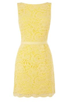 Yellow Lace Dress--me love it!