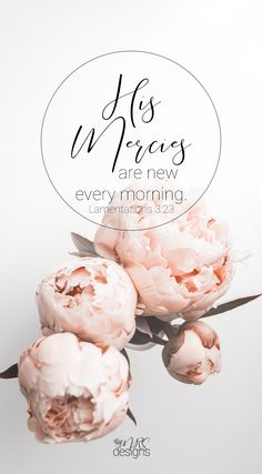What Have You Got to Prove | His Mercies Are New Every Morning | Faith | Will of God | Christianity | Bible | Inspiration | Encouragement | MRSdesigns.net
