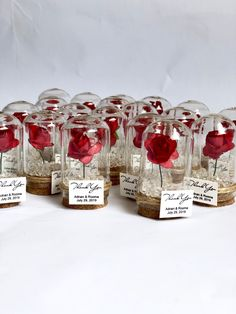 wedding favors for guests wedding favors favors dome custom favors beauty and the beast quinceanera sweet 16 rose dome favors Wedding Souvenirs For Guests, Creative Wedding Favors, Inexpensive Wedding Favors, Wedding Party Favors, Bridal Shower Favors, Wedding Invitations, Wedding Themes, Wedding Ideas, Wedding Vows