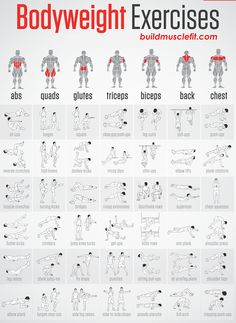 Good material for exercise refference http://buildmusclefit.com